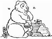 bear and honey coloring pages