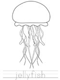 jellyfish learn to print coloring page