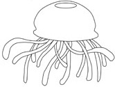 Jellyfish Animal Coloring Pages. jellyfish coloring page Ocean Animals Coloring Pages