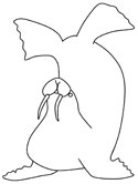 aboriginal art walrus coloring pages
