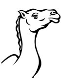 camel head coloring page