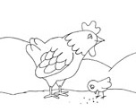 hen and chick coloring page