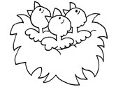chicks in a nest coloring page