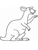 kangaroo coloring pages
