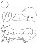 mammals of Poland: otter coloring page