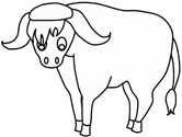 Mammals of India: yak coloring page