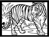 Mammals of India: tiger coloring pages