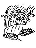 Russian crops - wheat coloring page
