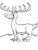 mammals of Norway: reindeer coloring pages