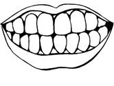 dental coloring page teeth coloring page