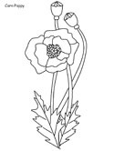 polish coloring pages | Poland Coloring Pages
