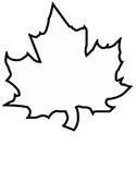 leaf coloring page - Tree Leaves Coloring Page